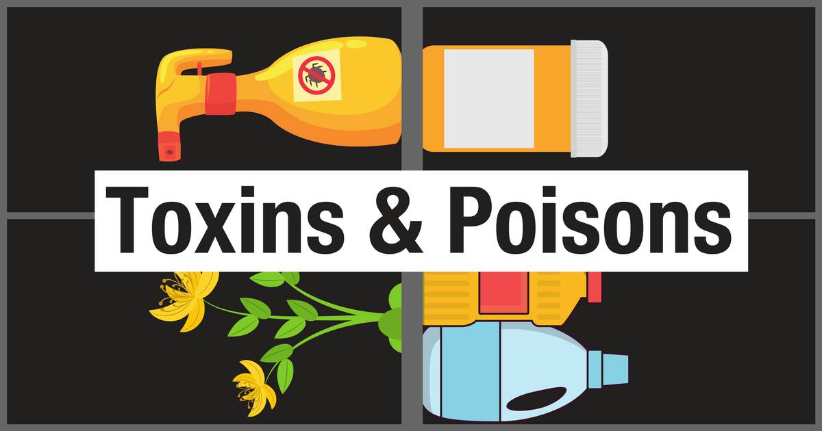 Image result for poisons