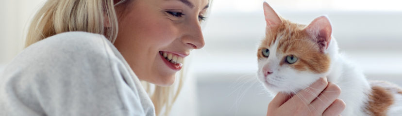 Woman petting white and orange cat