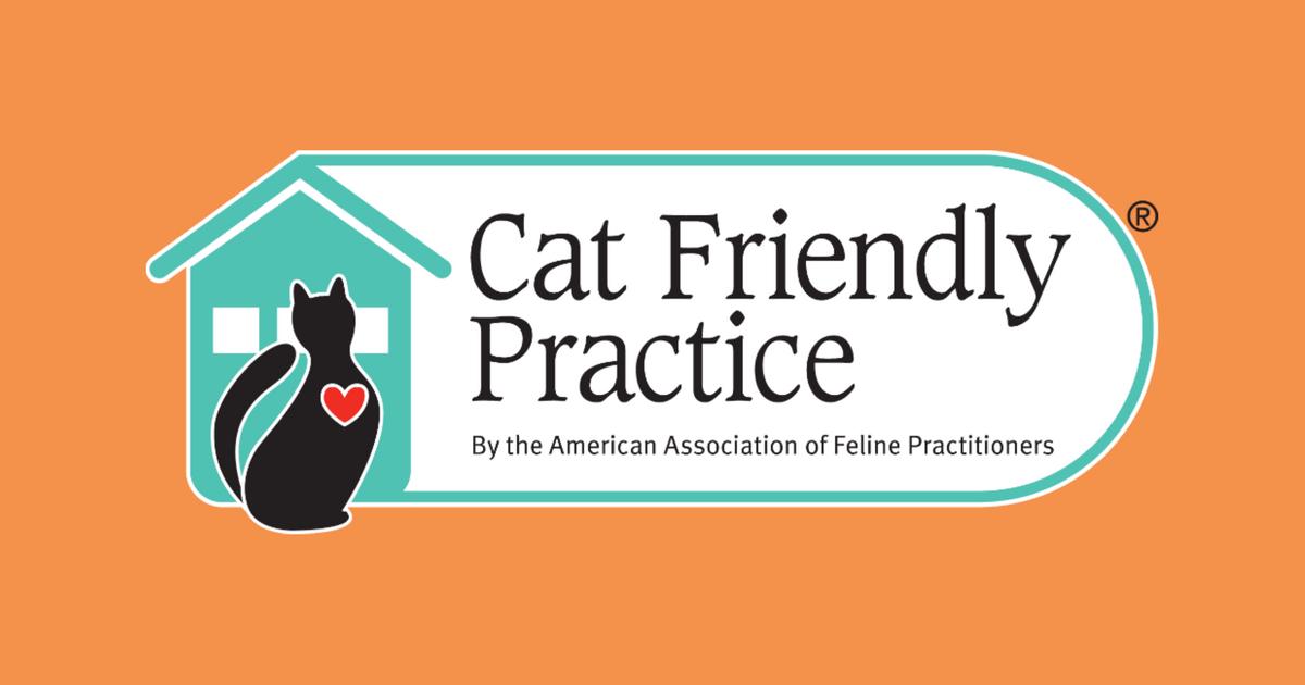 Cat Friendly Practice 174 The Cat Community